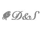 D&S Express Inc.