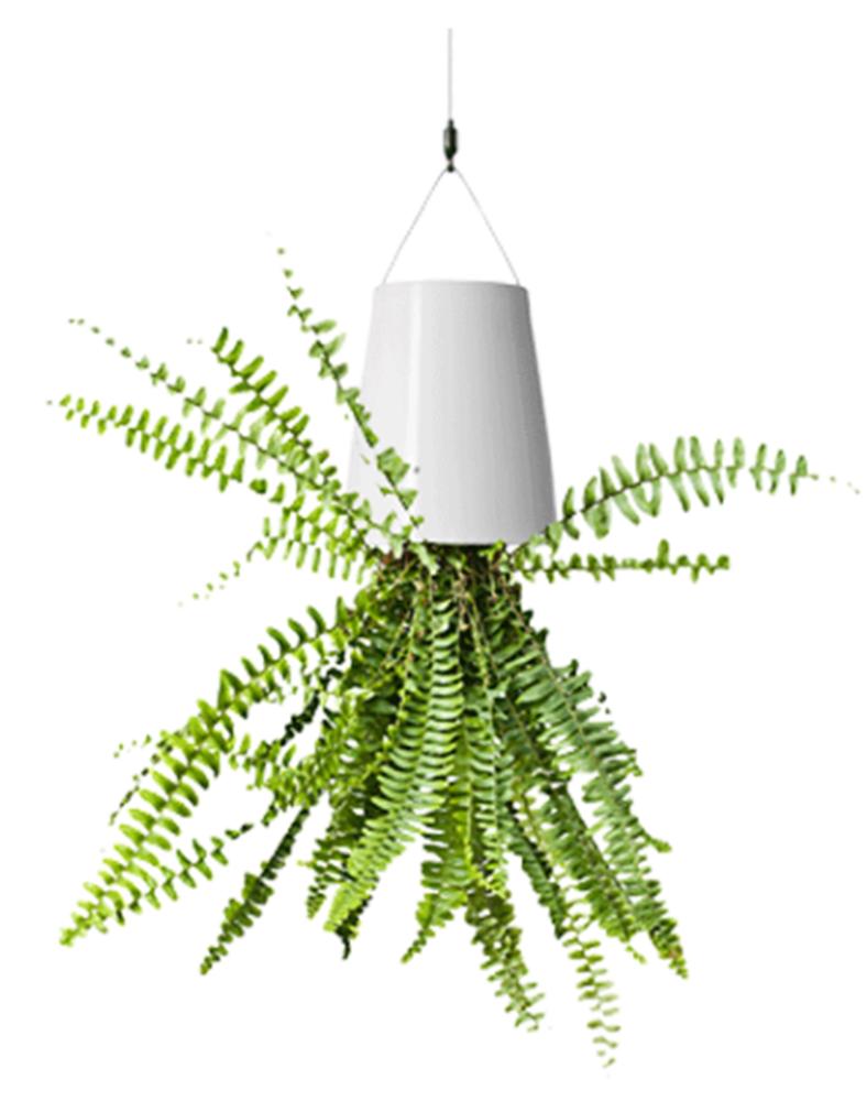 253 & New Arrival Hanging Flower Pot Sky Planter Upside-Down Plant Pot ...