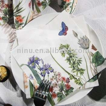ylnl110_07午餐餐巾、餐巾纸