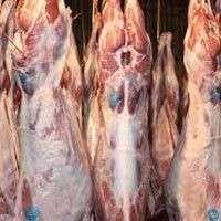新鲜的山羊肉,Fresh Sheep Meat