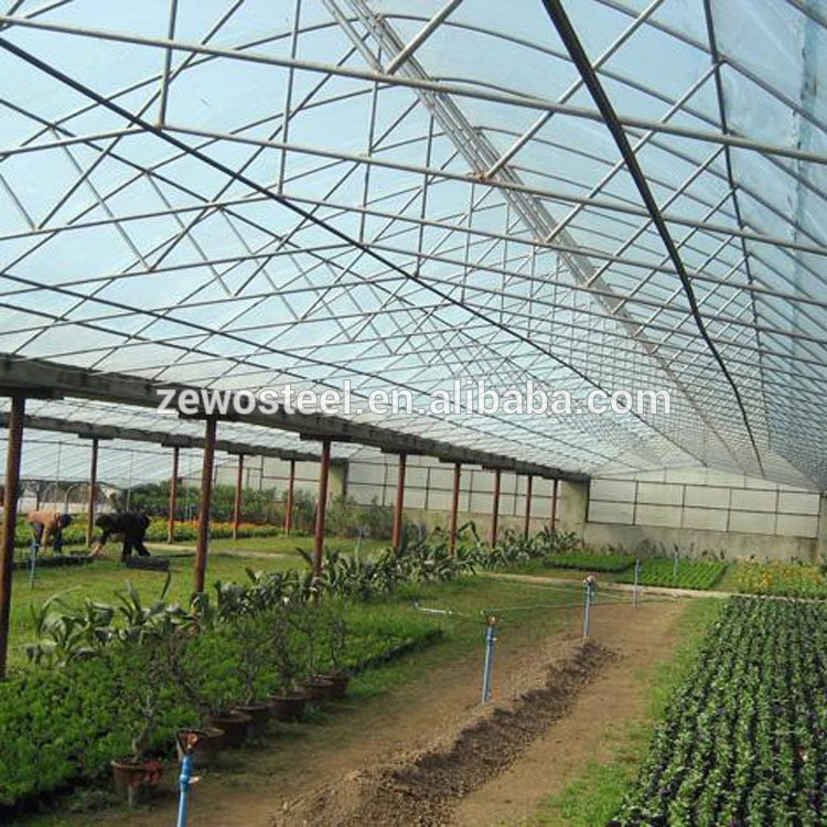 Economic Single Span Greenhouse for fruit