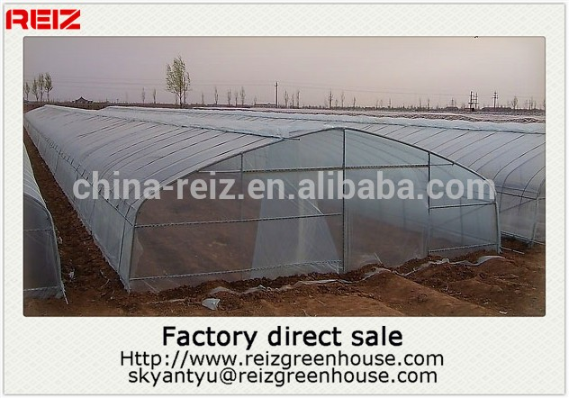 15 years warranty 100% bayer reinforced cheap plastic agriculture single span tunnel greenhouse