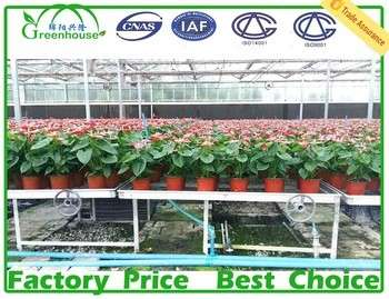 Greenhouse Rolling Benches factory