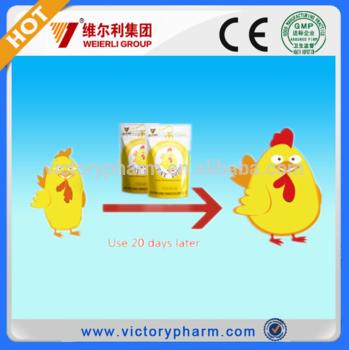 功能性复合维生素促进肉鸡增重减死