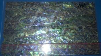 新西兰鲍鱼鲍鱼壳的层压板,胶合板和论文