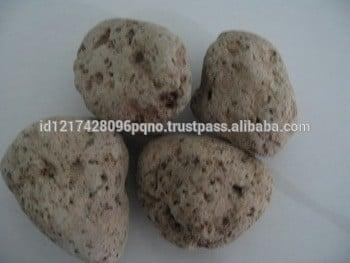 浮石或Volcanic Stone(厘米大小)