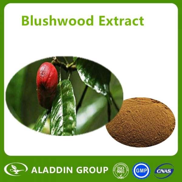 Blushwood Capsule ebc-46 / blushwood浆果提取物/最好的抗癌作用blushwood粉