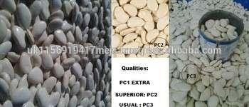 利马马达加斯加豆3种品质,付款方式100%即期信用证