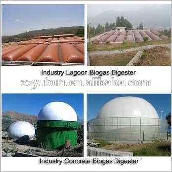 小型沼气发电厂