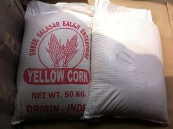 AAA级黄色玉米/玉米最适合人类食用