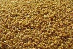 大豆蛋白,玉米蛋白粉,动物饲料,玉米蛋白粉/动物饲料
