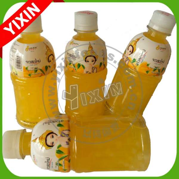 Pet bottle packed with coconut fruit mango juice