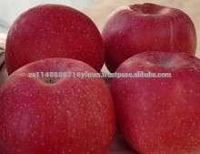 新鲜的苹果果实