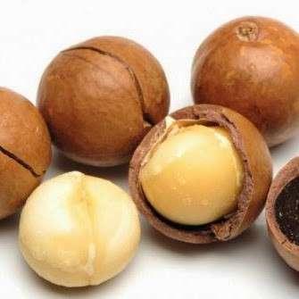 澳洲坚果(壳壳)-最好的价格和质量。