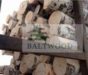 White birch logs, Baltic Birch logs