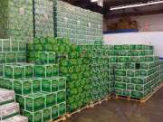 Heineken, Becks, Carlsberg, Kronenbourg 1664, Guiness & Other Beers