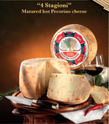 Authentic Hot Matured Pecorino Cheese from Italy, Calabria