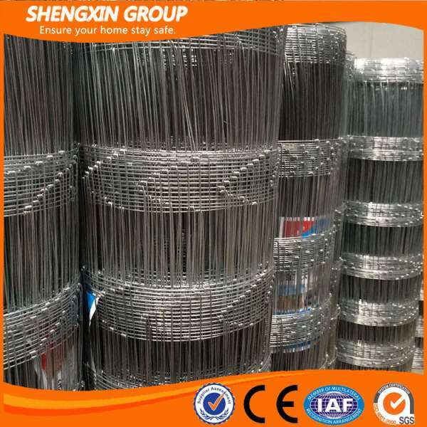 Electric Fence Netting/sheep Fence Net