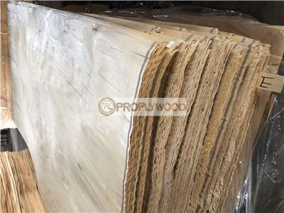 Nature White Birch Veneer Rotary Cut E/E+ Grade For Furniture  Usage(0.1mm 1.5mm)