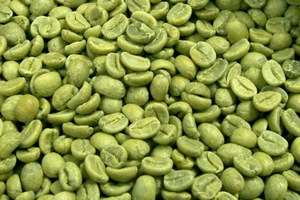 咖啡豆,Robusta,阿拉比卡,咖啡馆,Liberica,爪哇