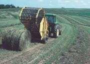 Alfalfa Hay For Sale !!!!