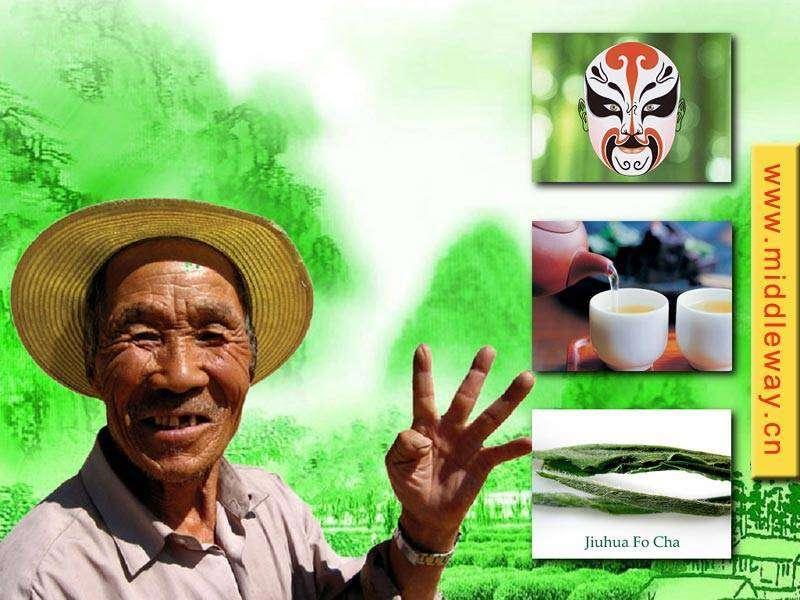 Chinese Organic tea-Organic Green tea/Oolong tea/White tea
