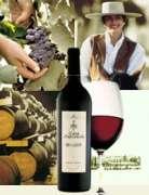 Wine Casa Lapostolle