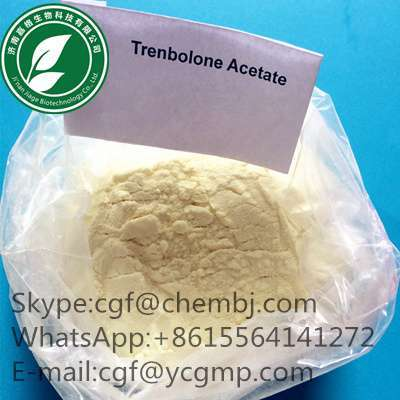 Where Is The Best testosterone enanthate balkan?