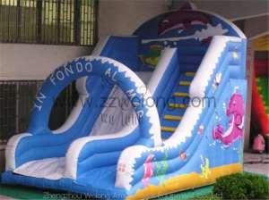 Inflatable Slide-Cetacean Slide
