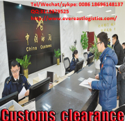 Rich experience international sea freight from guangzhou to  India