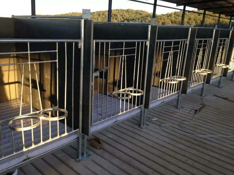 Calf Fence