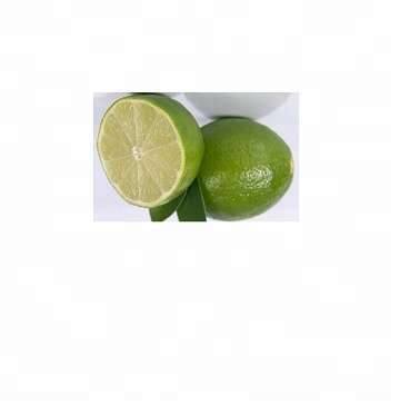 Fresh Green Lime Seedless and SEEDLESS LIME,PERSIAN LIME