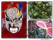 Tie Guan Yin Oolong tea-Premium Oolong
