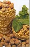 walut kernel