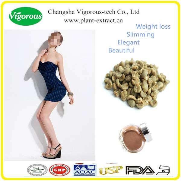 Weight Loss Green Coffee Bean Extract Powder 50 Chlorogenic Acid