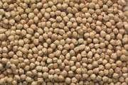 Cheap 2018 crop garbanzo beans chick peas