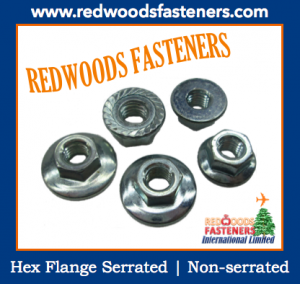 Hot Sales Hex Flange Nut Serrated, Non-serrated DIN6923
