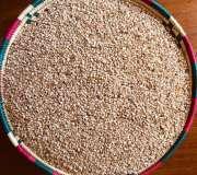 White Sesame Seeds(Wellega Type)