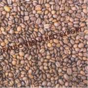 COFFEE BEANS FROM VIETNAM AND ETHIOPIA