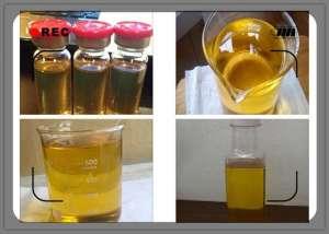 250mg/ml Test P Liquid Anabolic Steroid Testosterone Propionate