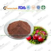 Imported Cranberry Extracts: Cranberry ProAnthocynins