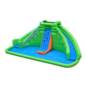 Commercial Frog Inflatable Water Slide With Pool For Kids