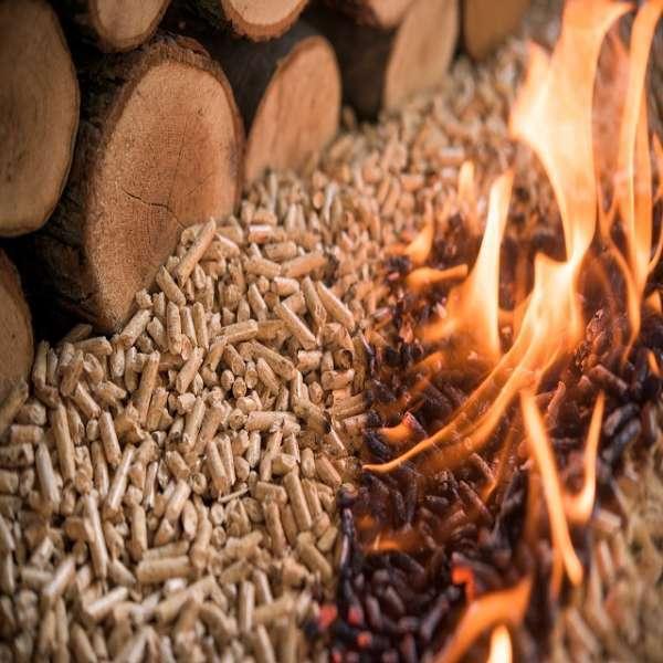 Wood Pallets Or Rice Husk Pallets