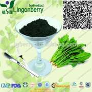 plant extract;Spinacia extract:Sodium copper chlorophyllin; Chlorophyll