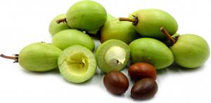 Fresh Shea Fruit