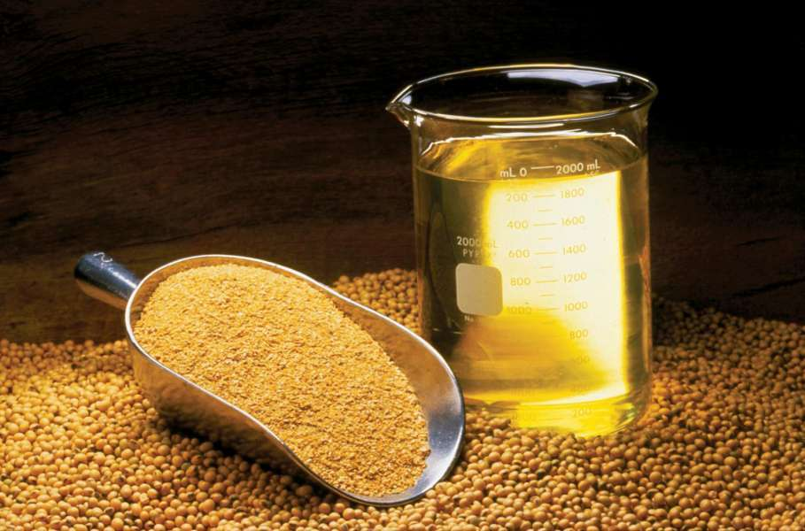 Soybean Meal Manufacturers | Soybean Meal Suppliers - Eworldtrade com