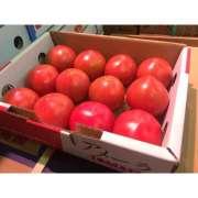 Fresh Cherry Tomato.