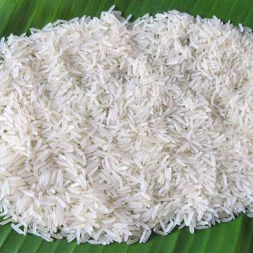 Distributor Thailand Jasmine Rice Price