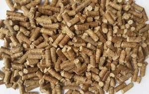 Cassava Pellet