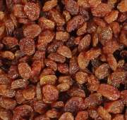 High Quality Low Price Dried Raisins For Sale